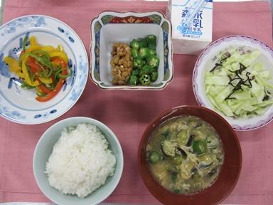 IMG_3777朝.JPG
